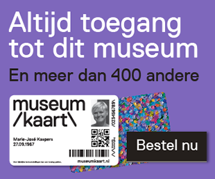 mk_banner_museum-site_paars_rectangle